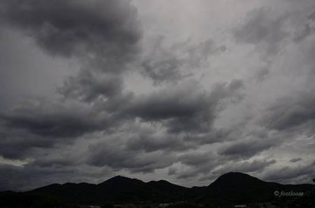 2014-07-09_100.jpg